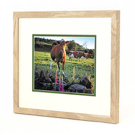 photogift_framed_prints
