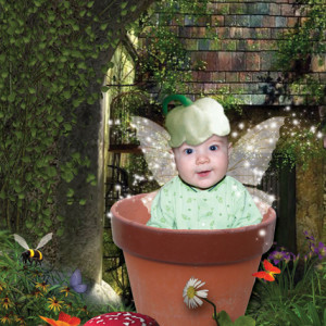Flowerpot Fairy - Baby Photos