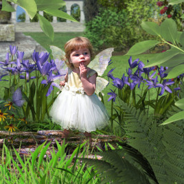 Fairy at the bottom of the Garden Fairy Photo