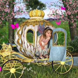 fairy_carriage_fairy_photo