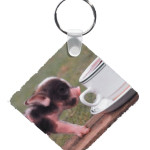 Plastic Photo Keyrings